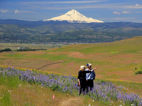 Wildflower-filled hiking trails highlight Columbia