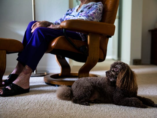 Jovi sits at Marietta Keppler's feet while at home