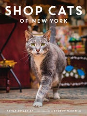 'Shop Cats of New York.'