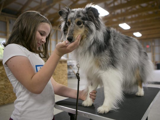 Ashlyn Cywinski, 10, of Plover, feeds her dog Piper