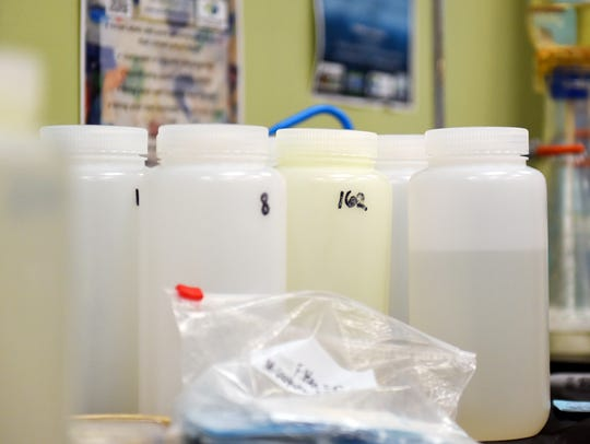 Water samples collected along the Treasure coast wait