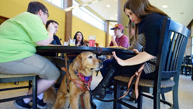 Blair Hagelgans eats lunch with a group of friends and her service dog Creed at York College. Hagelgans, a York College senior, has Chiari malformation and syringomyelia. She has problems with balance and coordination, and has 17 brain and spine surgeries.