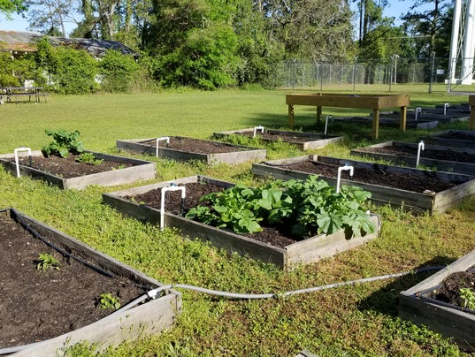636586273784191924-Macon-community-garden.jpg
