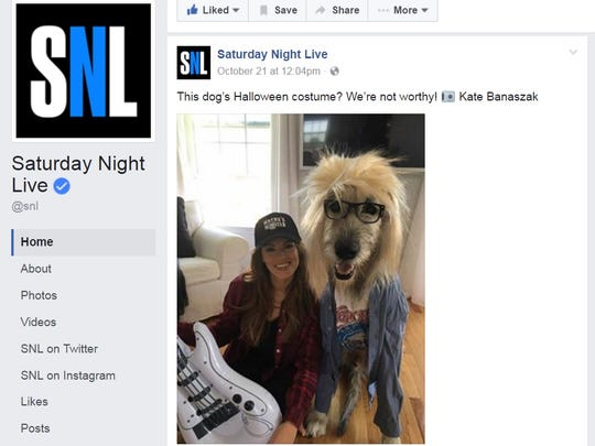 """Saturday Night Live"" posted Kate Banaszak's pet photo"