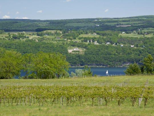 Wineries on Seneca Lake produce their share of unusual wines, beyond Riesling.