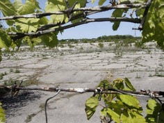 More contamination confirmed at former Buick City site