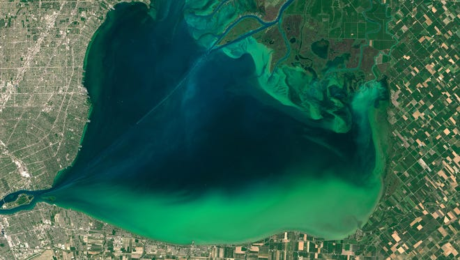 A satellite photo taken in August 2015 shows algae blooming in Lake St. Clair