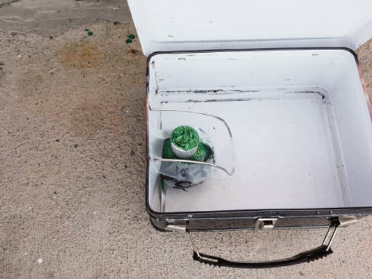 A photo of the inside of the black metal lunch box provided to the Daily News by pet shop owner Karen Walker shows what she and her co-owner saw when they opened the suspicious container left in front of the store. Walker said they called the police in part because they didn't know who had left the lunch box, which appears to have contained a green Christmas ornament.