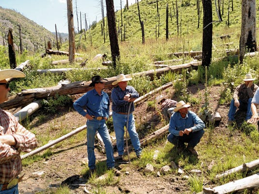 Lincoln County Commission Chairman Preston Stone, center, leaning on a tall stick, listens as Forest Service officials explain the initial plan.