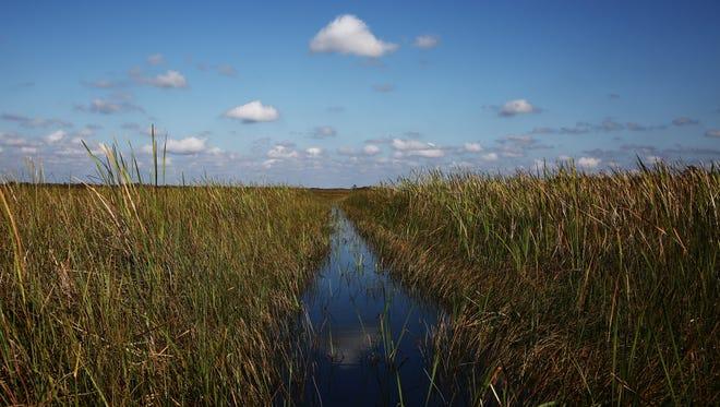 Everglades National Park photographed in November 2015.