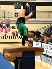 Anna Cummins attacks the vault for Sycamore at the