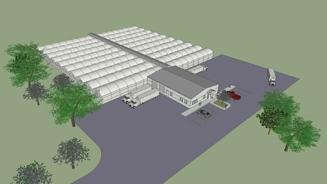 A renewable energy commercial greenhouse could cover 4 acres and produce about 4 million pounds of produce a year. This drawing shows what the greenhouse could look like.