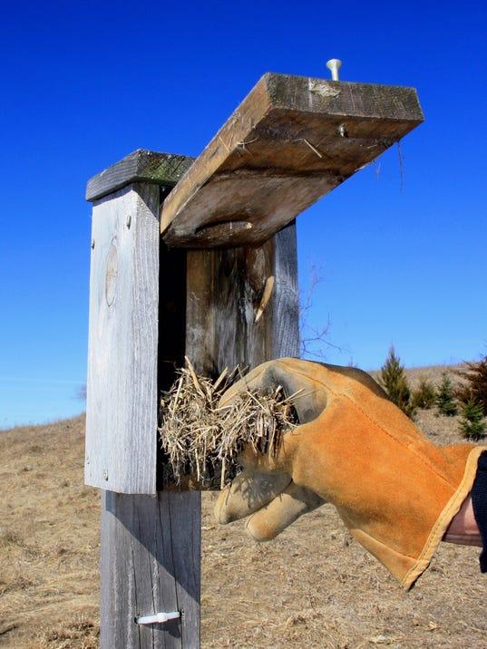 636268147902745795-birdhouse.JPG