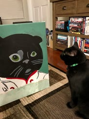 My cat Binx checking out the finished product.