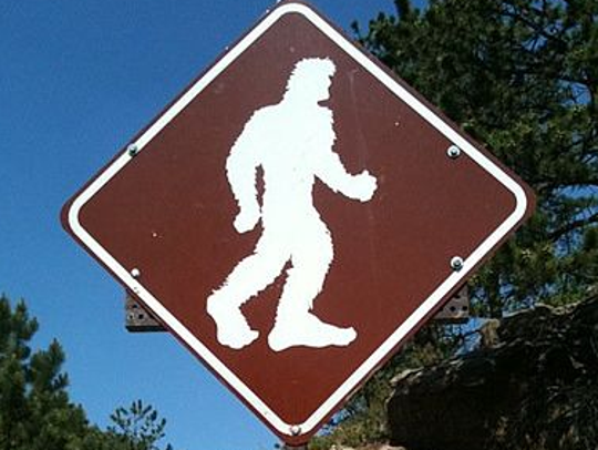 Bigfoot sightings have been reported in Montana's prairie counties, as well as in the woods.