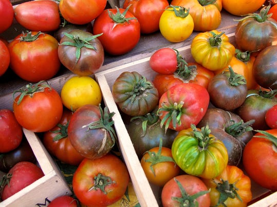 Gardening-Perfect Tomato (2)