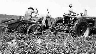 Farming became largely mechanized during the 1940s.
