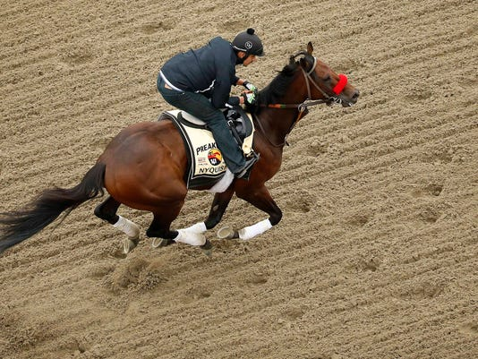 Horse Racing: Preakness-Workouts