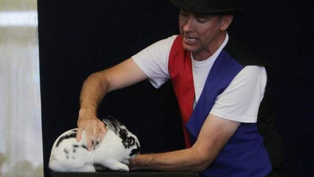Springfield, Mo., magician Marty Hahne, shown performing a magic show with his rabbit, has grown frustrated by federal regulations that require him to obtain a license and report his activities.
