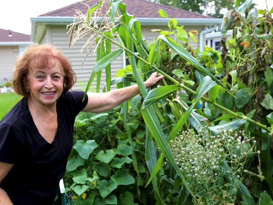 Theresa Ravanelli shows off her 9-foot corn. She has