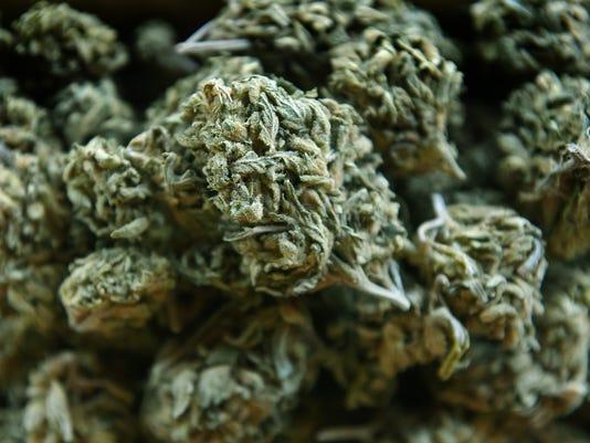 636324577392892378-Elko-Marijuana-2.jpg