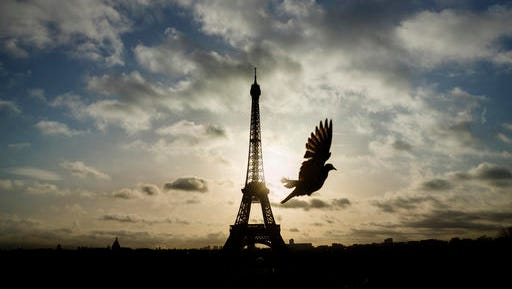 FILE - In this Sunday, Nov. 15, 2015 file photo, a bird flies in front of the Eiffel Tower, Paris, which remained closed on the first of three days of national mourning, in Paris. France is preparing to mark one year since the attacks with commemorations on Sunday Nov. 13, 2016.