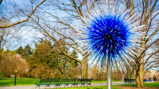 """This April 13, 2017 photo provided by the New York Botanical Garden shows Sapphire Star which is part of the Chihuly exhibit at the New York Botanical Garden in New York. The show, titled simply """"Chihuly,"""" reveals the evolution of Dale Chihuly's work from 1980 to the present."""