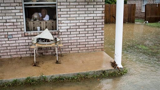 Priscilla Lester and her dog, Niko, watch out the window as firefighters make their way down Mountain Terrace Street in Frayser, Tenn., after flood waters came up into homes along Mountain Terrace after the heavy early morning rains  in the Memphis area on Sept. 11, 2014. Lester has lived in the home since 2003 and says this is the fourth flood that has affected the home.