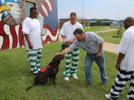 Charles Dwyar of Retrieving Freedom works with three of eight incarcerated U.S. military veterans at the Central Mississippi Correctional Facility in Pearl who train service dogs for disabled veterans in a program sponsored by Soldier On.