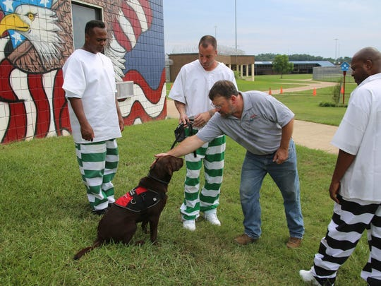 Charles Dwyar of Retrieving Freedom works with 3 of 8 incarcerated U.S. military veterans at the Central Mississippi Correctional Facility in Pearl who train service dogs for disabled veterans in a program sponsored by Soldier On.