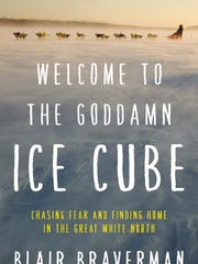 """""""Welcome to the Goddamn Ice Cube"""" by Blair Braverman."""