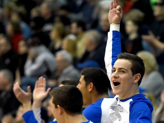 Cedar Crest's Luke Allwein celebrates an Evan Horn