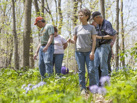 Visit Campbell County Environmental Education Center in Alexandria for a wildflower hike Saturday afternoon.