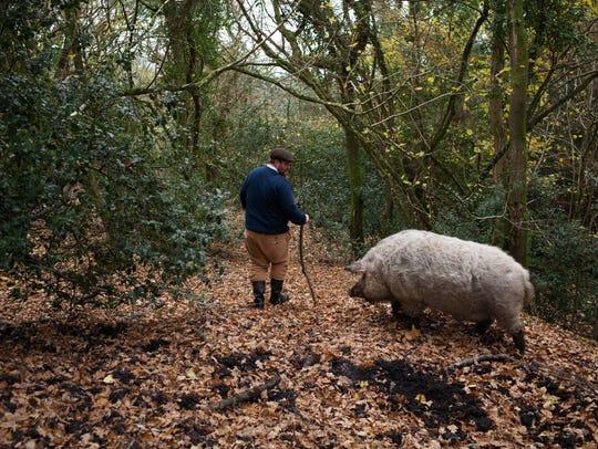 Illtud Dunsford on his farm in Wales.