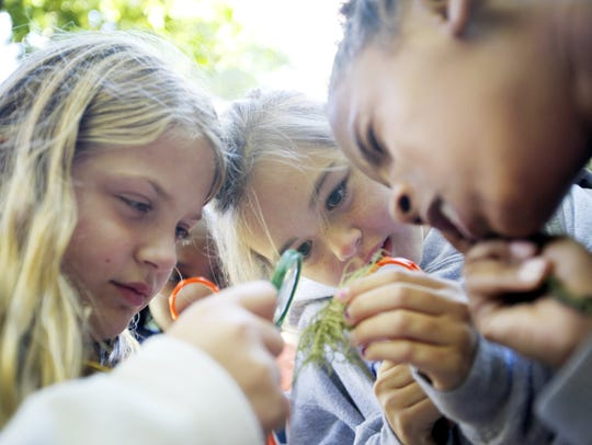 From left, Emma Locane, Hadley Wallace and Kimorrah Barton-Ray look at moss through magnifying glasses during a Muddy Sneakers lesson at Bent Creek in October 2016.