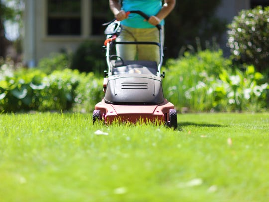 Woman Mowing the grass lawn