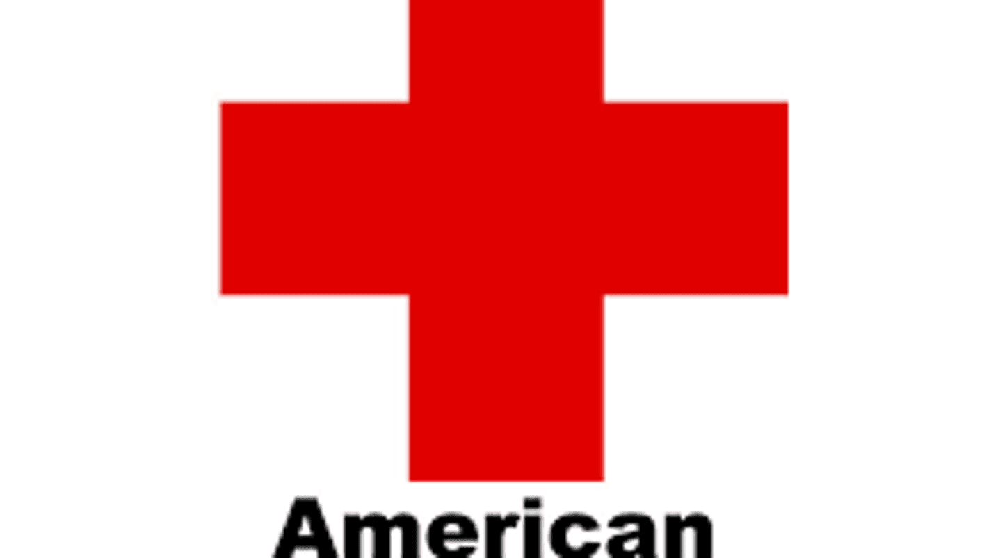 red cross essay Red cross is now the largest and probably the most active international humanitarian organization of the world it known as red crescent  this is so ugly essay.