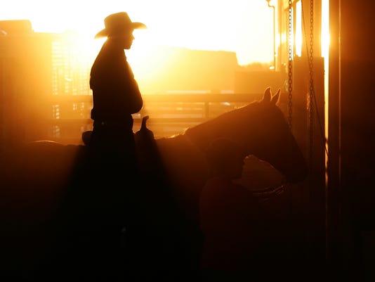 FMN Stock Image Cowboy