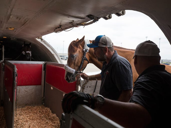 Kentucky Derby winner Justify is lead onto a plane