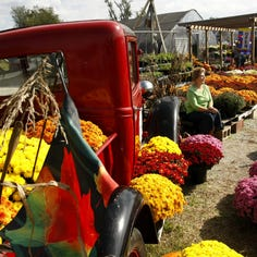Fall festivals in the Ozarks, large and small