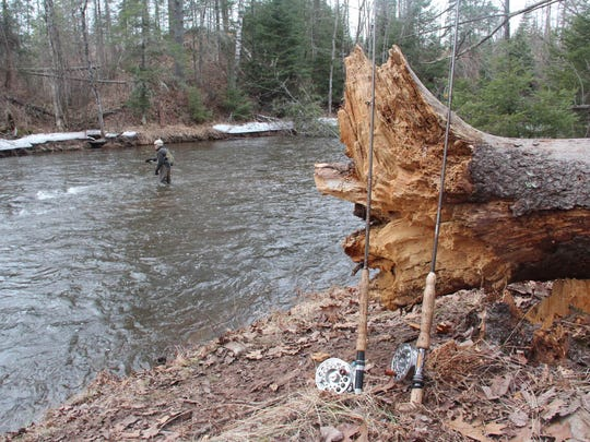 Fly rods are propped against a log while an angler fishes on the Brule River.
