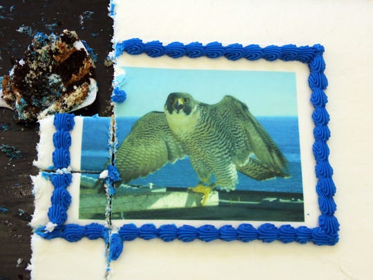 A cake featuring a rendition of a peregrine falcon