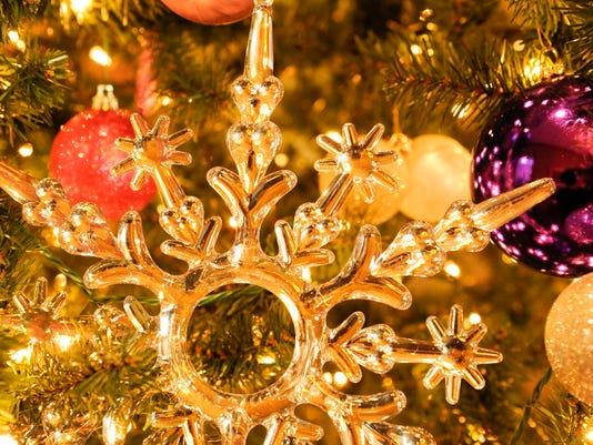 635496844664293135-MAN-f-Christmas-Mansion-39-copy
