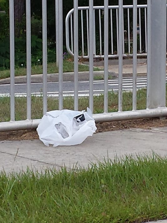 ST-Plastic-bag-litter-on-sidewalk-Aug-2014.jpg