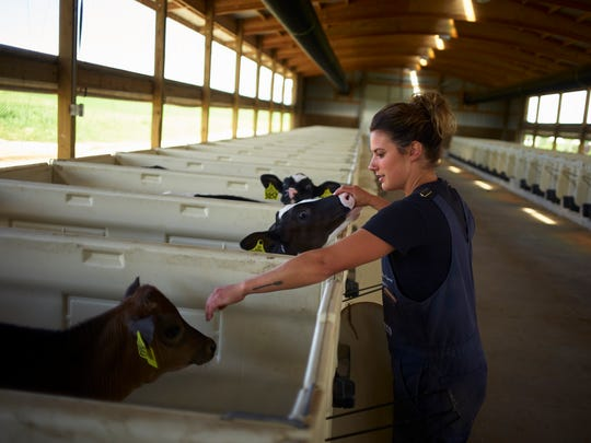 Abby Driscoll tends two of more than 400 dairy cows at her northeastern Wisconsin dairy farm outside Manitowoc, Wis. on July 25, 2017. Driscoll, who voted for Donald Trump in the 2016 election, said she wasn't expecting his immigration policies to go as far as they have.