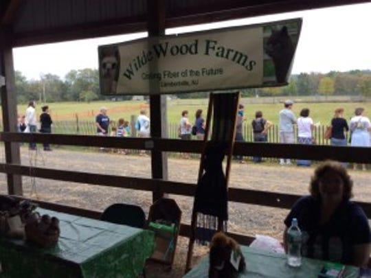 Donna Covin raises alpacas at Wildewood farm in Lambertville.