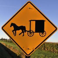 Michigan man starts 'Amish Uber' horse and buggy service