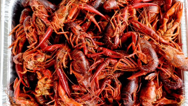 The celebrity crawfish eating contest kicks off the start of the Mudbug Madness Festival Thursday afternoon at Festival Plaza.