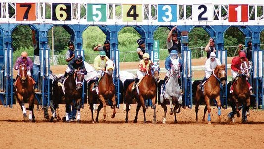 In this file photo, horses break out of the gate for the start of a race at the Ruidoso Downs Racetrack.