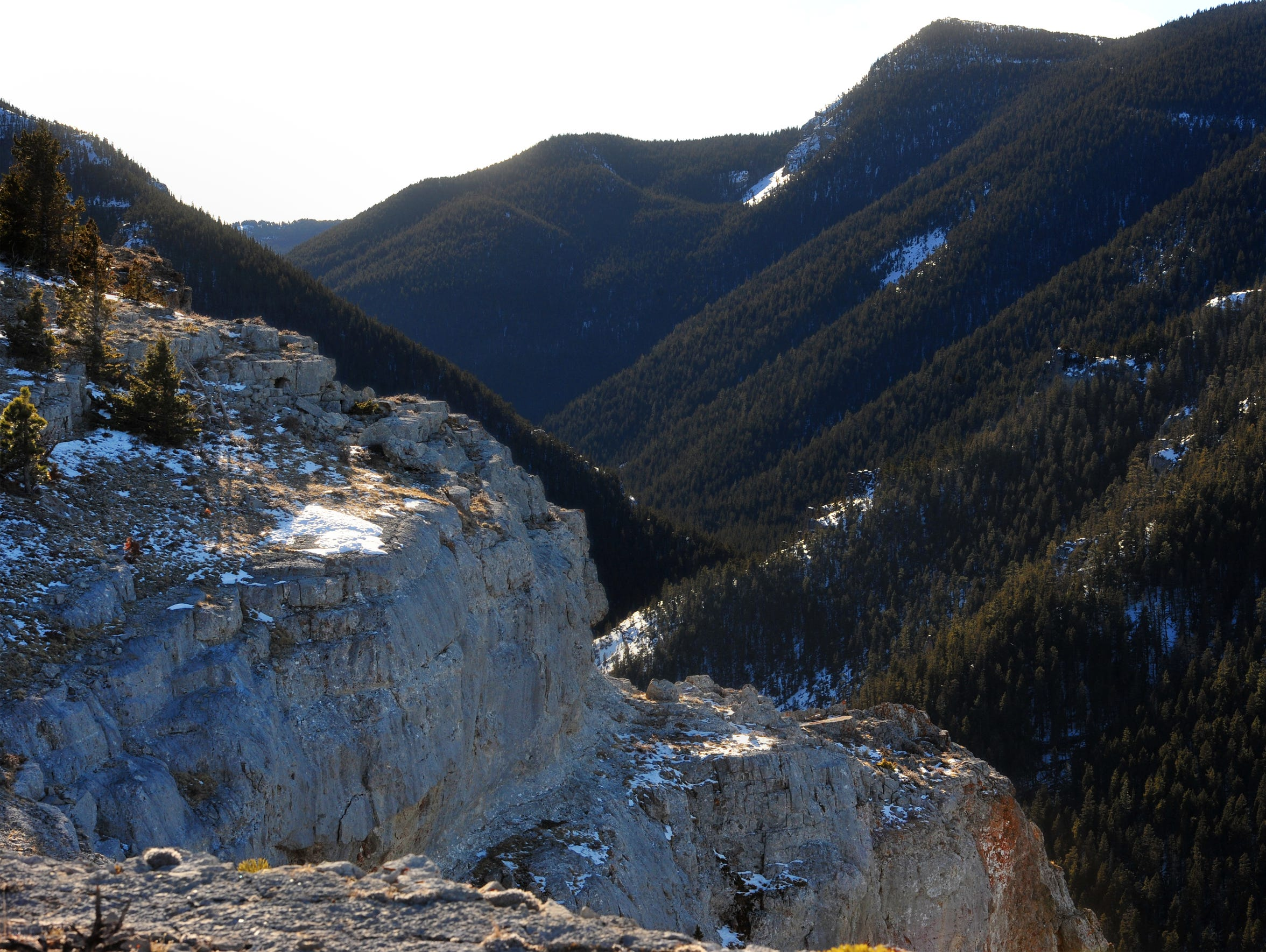 A look into Half Moon Canyon in the Big Snowy Mountains